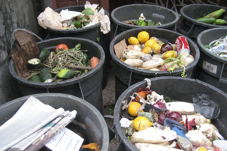 Doctoral Student Examines How Communication Helps Reduce Food Waste