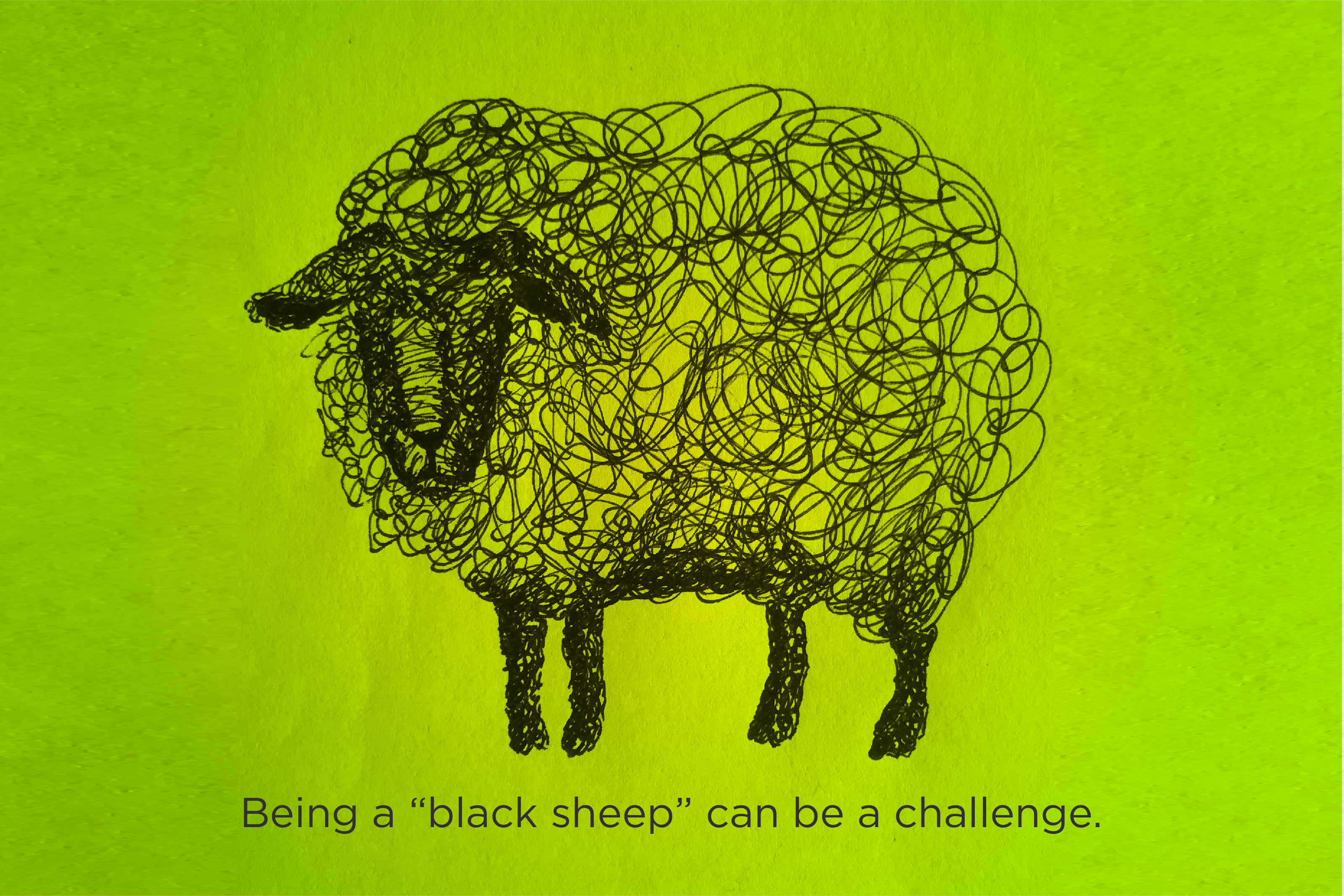 Sketch of a Black sheep.
