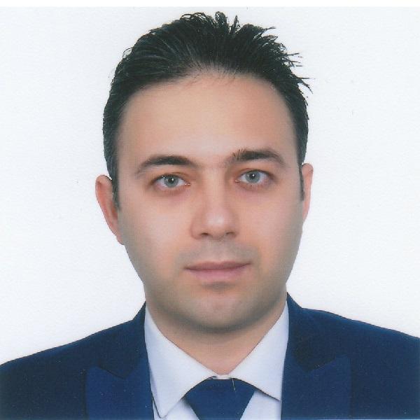 Hamzeh Ghasemzadeh.jpg